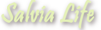 Salvia Life кулінарія, вишивка